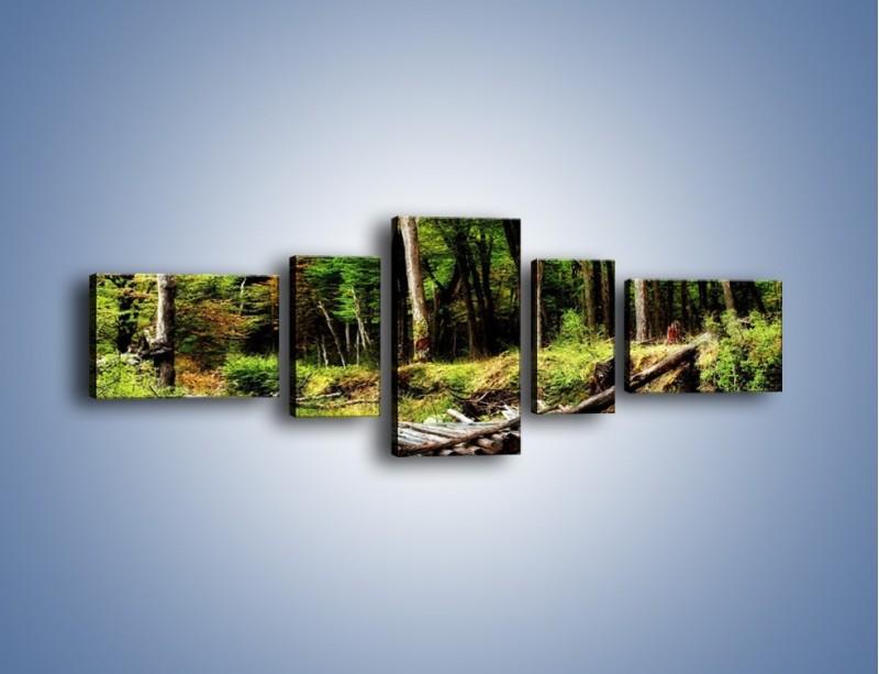 Obraz na płótnie – Brak przejścia na druga stronę – pięcioczęściowy KN1040W6