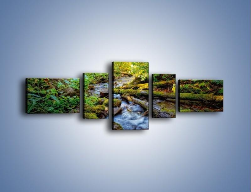 Obraz na płótnie – Drewno ścięte do wody – pięcioczęściowy KN1059W6