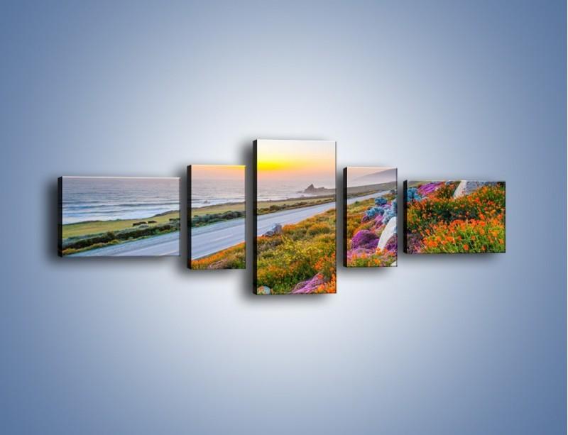Obraz na płótnie – Kolory wiosny w kwiatach – pięcioczęściowy KN1062W6