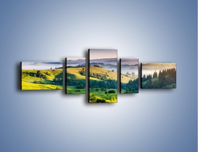 Obraz na płótnie – Tylko zieleń i góry – pięcioczęściowy KN1084W6