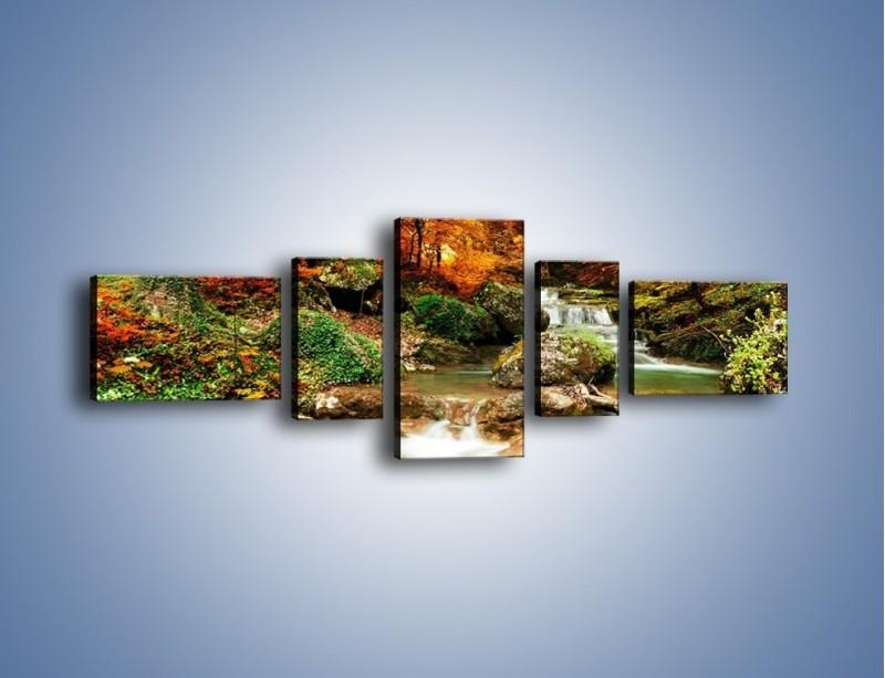 Obraz na płótnie – Jesienne kolory w lesie – pięcioczęściowy KN1094AW6