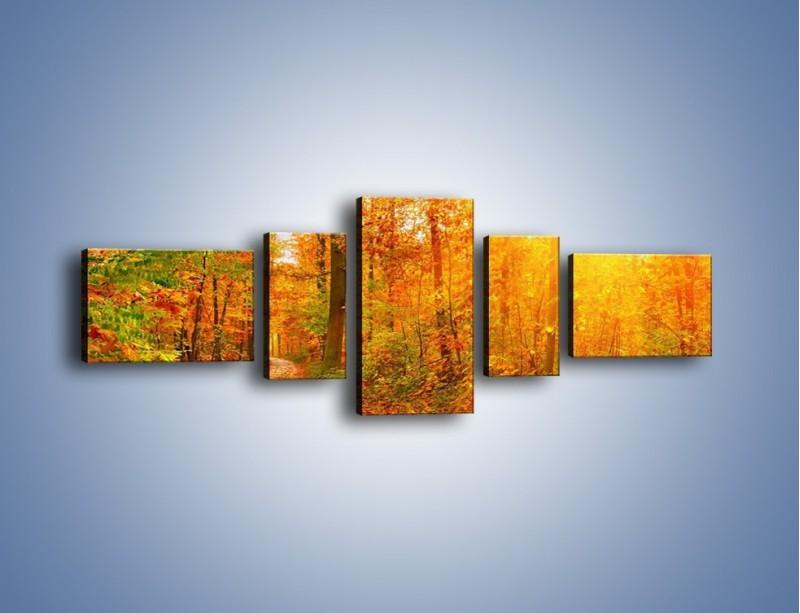 Obraz na płótnie – Leśną drużką jesienią – pięcioczęściowy KN1163AW6