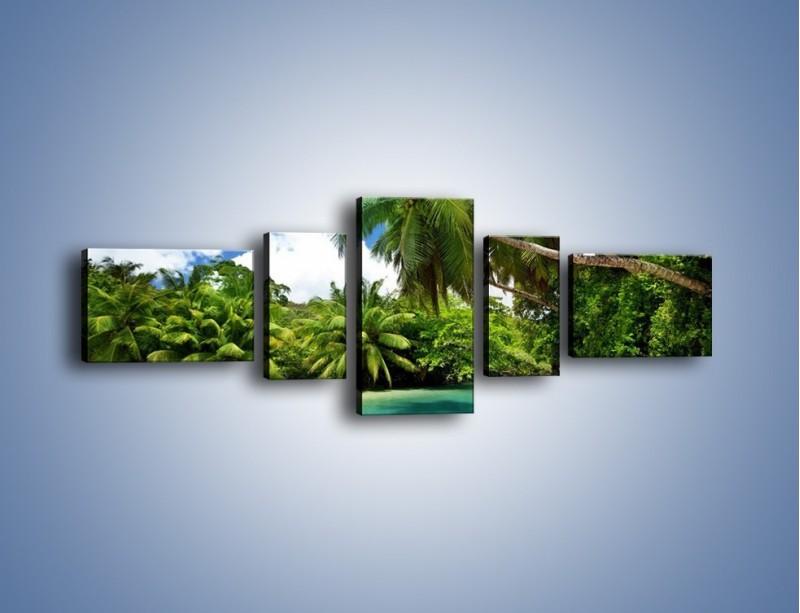 Obraz na płótnie – Rozłożone palmy i woda – pięcioczęściowy KN1168AW6