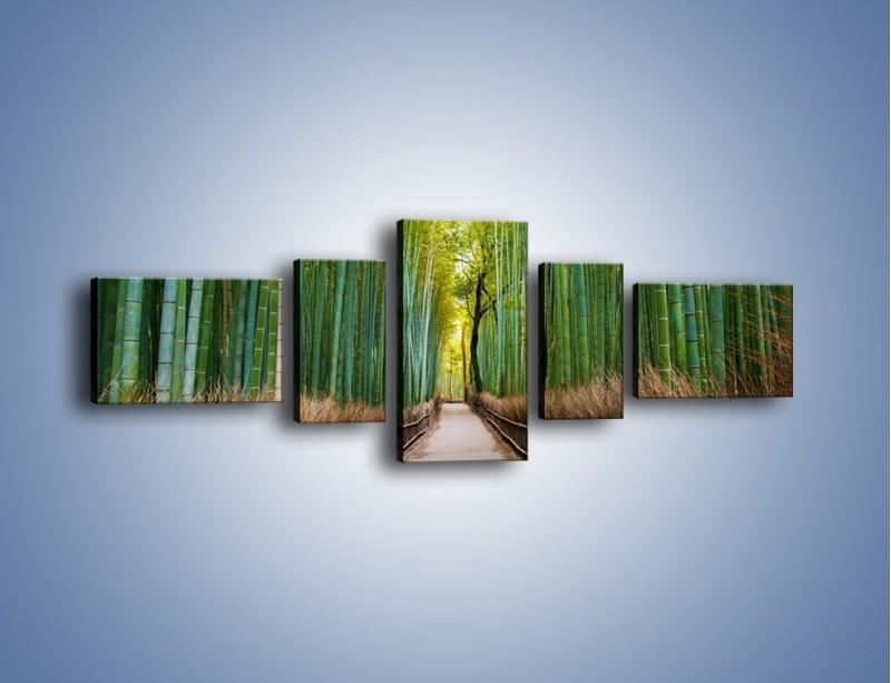 Obraz na płótnie – Bambusowy las – pięcioczęściowy KN1187AW6