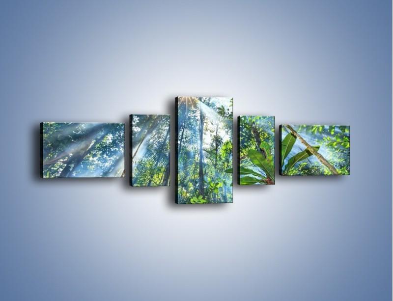 Obraz na płótnie – Dyzio marzyciel i drzewa – pięcioczęściowy KN1189AW6