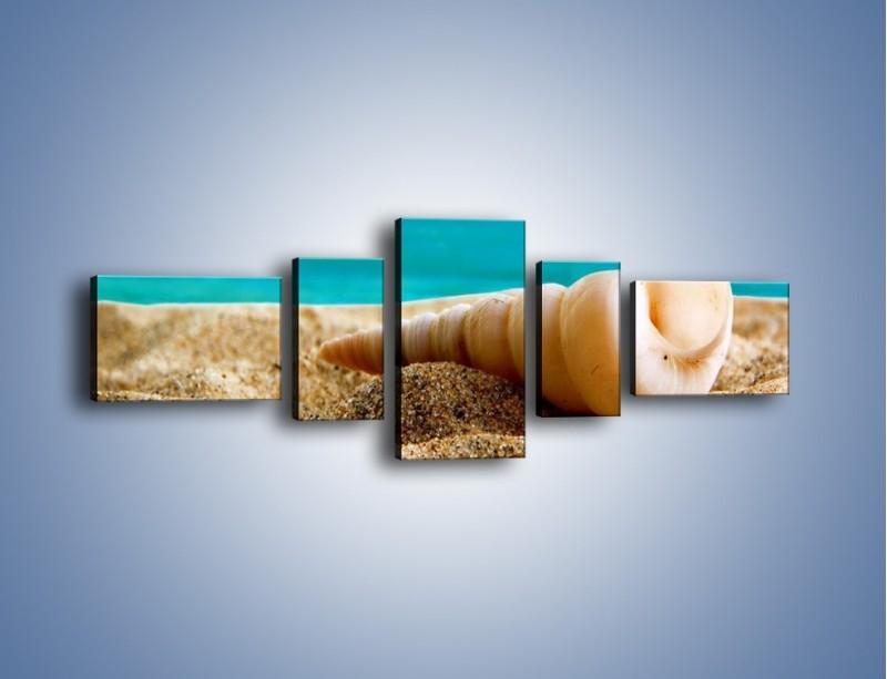Obraz na płótnie – Czy uda się zobaczyć ślimaka – pięcioczęściowy KN1210AW6