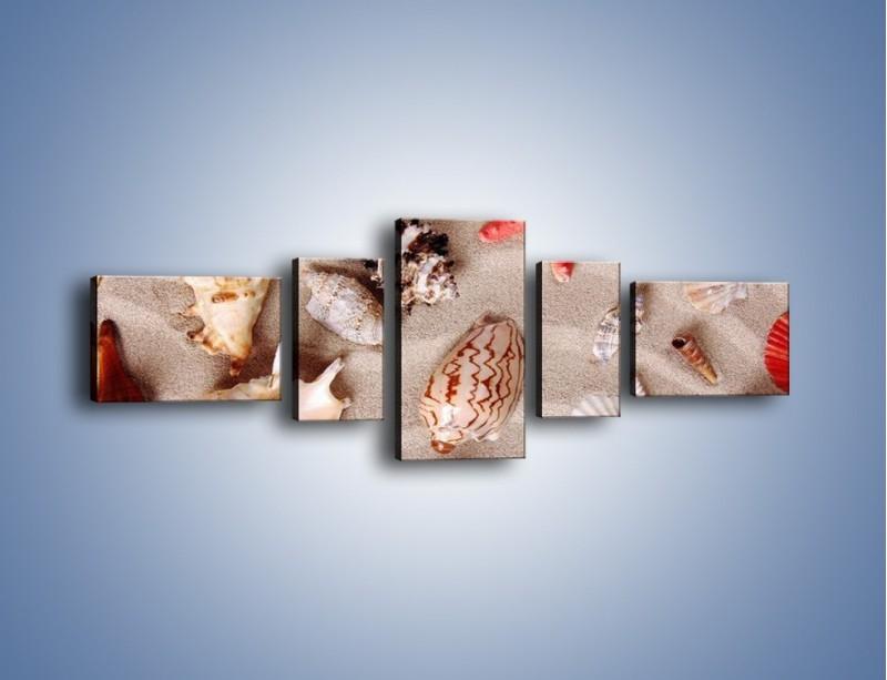 Obraz na płótnie – Kolorowe skorupiaki – pięcioczęściowy KN1214AW6