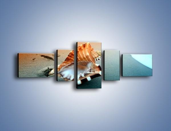 Obraz na płótnie – Szum morza w muszli – pięcioczęściowy KN1217AW6