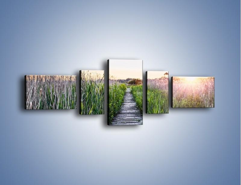 Obraz na płótnie – Kładka wśród mokradeł – pięcioczęściowy KN1248AW6