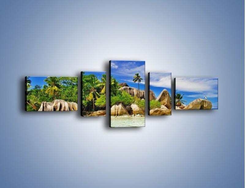 Obraz na płótnie – Tropiki i ich wysokości – pięcioczęściowy KN1306AW6