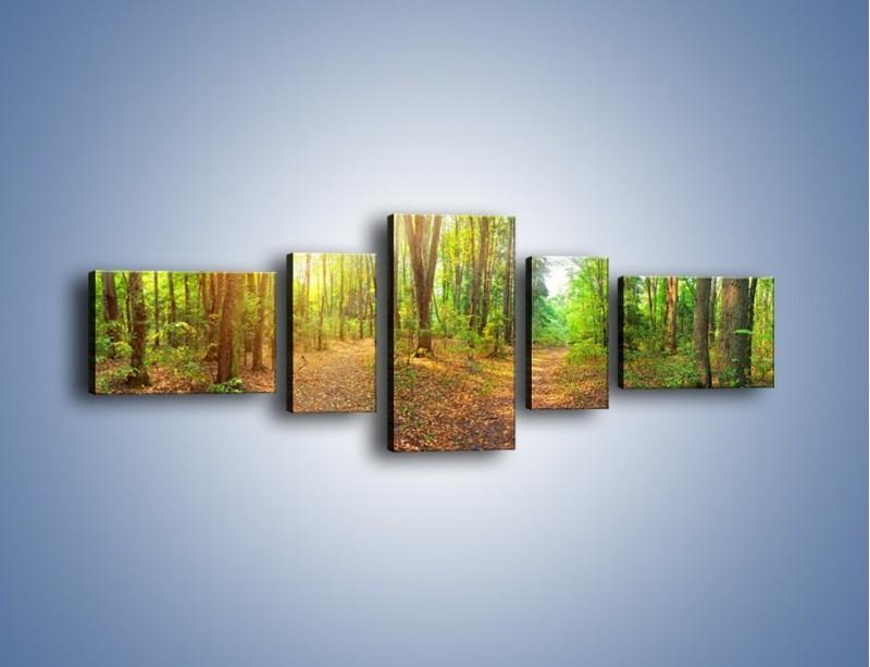 Obraz na płótnie – Przejrzysty piękny las – pięcioczęściowy KN1344AW6