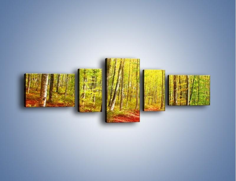 Obraz na płótnie – Brzózki liście i las – pięcioczęściowy KN1345AW6