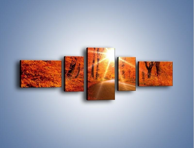 Obraz na płótnie – Droga pełna słońca – pięcioczęściowy KN160W6