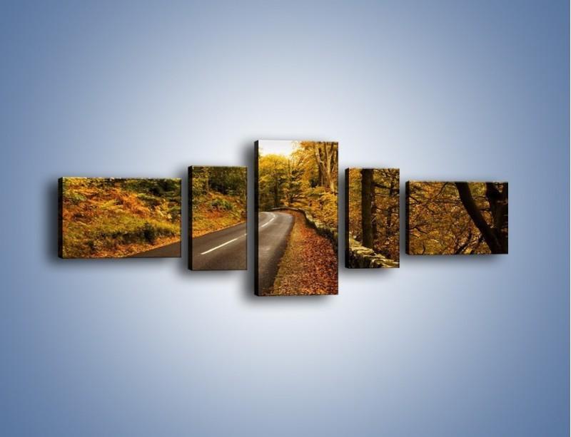 Obraz na płótnie – Asfaltową droga przez las – pięcioczęściowy KN169W6