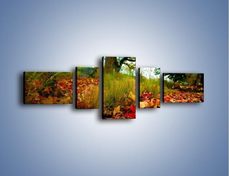 Obraz na płótnie – Droga usłana liśćmi – pięcioczęściowy KN172W6