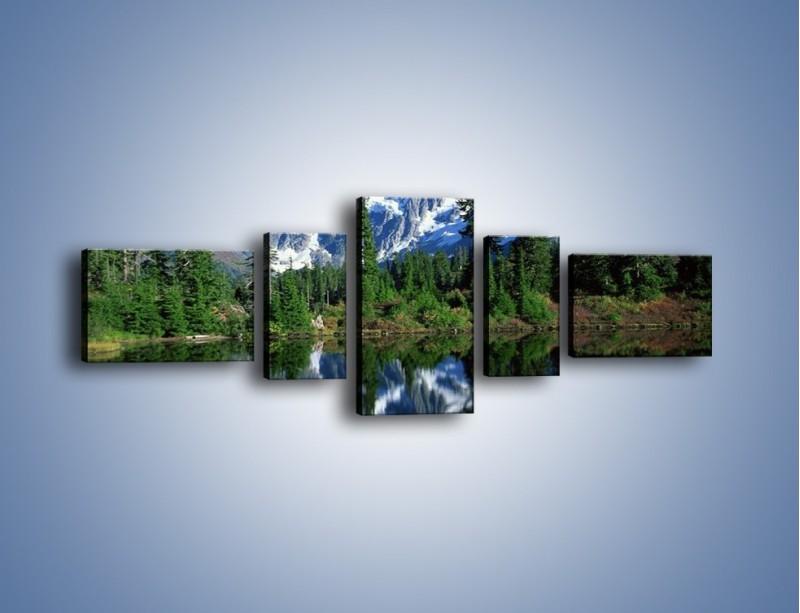 Obraz na płótnie – Zimowe pozostałości w górach – pięcioczęściowy KN225W6