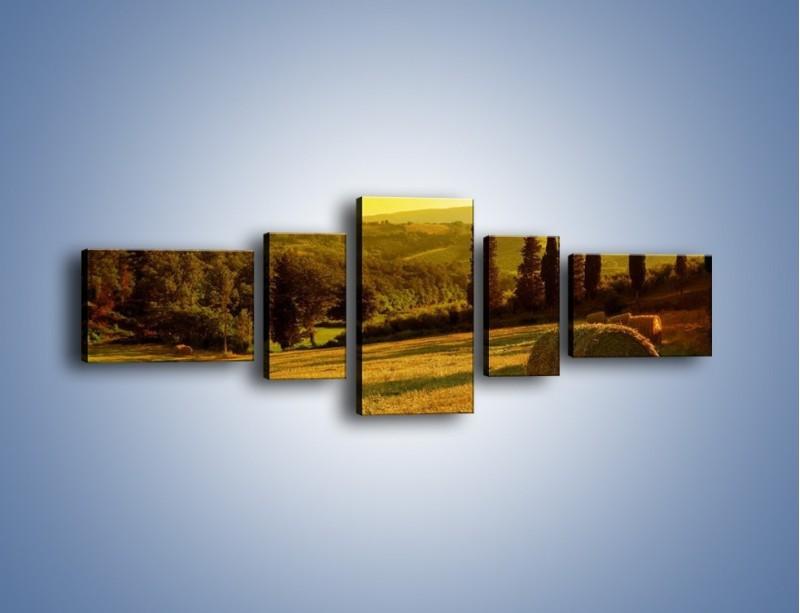 Obraz na płótnie – Belka siana w cieniu – pięcioczęściowy KN236W6