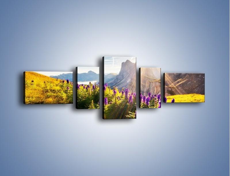 Obraz na płótnie – Góry w poświacie słońca – pięcioczęściowy KN502W6