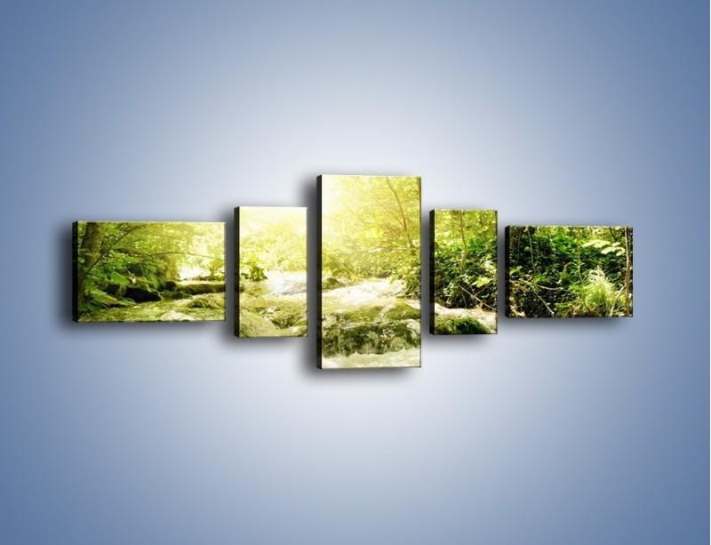 Obraz na płótnie – Wzburzony potok leśny – pięcioczęściowy KN508W6