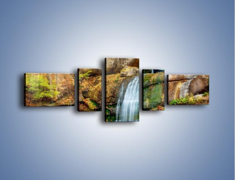Obraz na płótnie – Leśne podłoże późną jesienią – pięcioczęściowy KN563W6