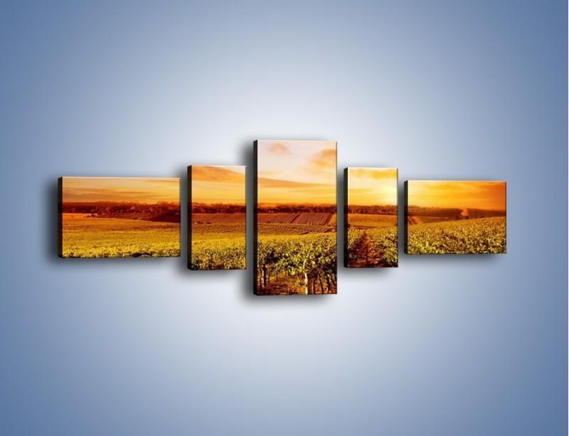 Obraz na płótnie – Ziemia i uprawy – pięcioczęściowy KN673W6