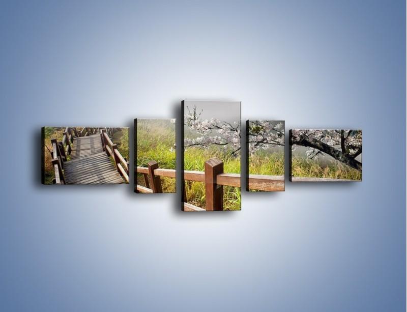 Obraz na płótnie – Drzewo wiśni i kręte schody – pięcioczęściowy KN698W6