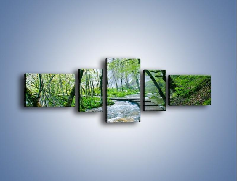 Obraz na płótnie – Drewniana kładką przez potok – pięcioczęściowy KN720W6