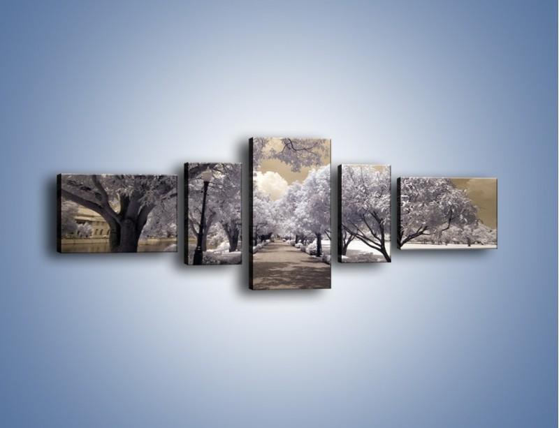 Obraz na płótnie – Parkowa aleja w sepii – pięcioczęściowy KN734W6