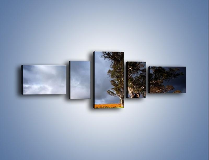 Obraz na płótnie – Burzowe chmury nad polaną – pięcioczęściowy KN748W6