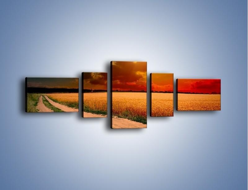 Obraz na płótnie – Zbożowa polana i jej cały urok – pięcioczęściowy KN776W6