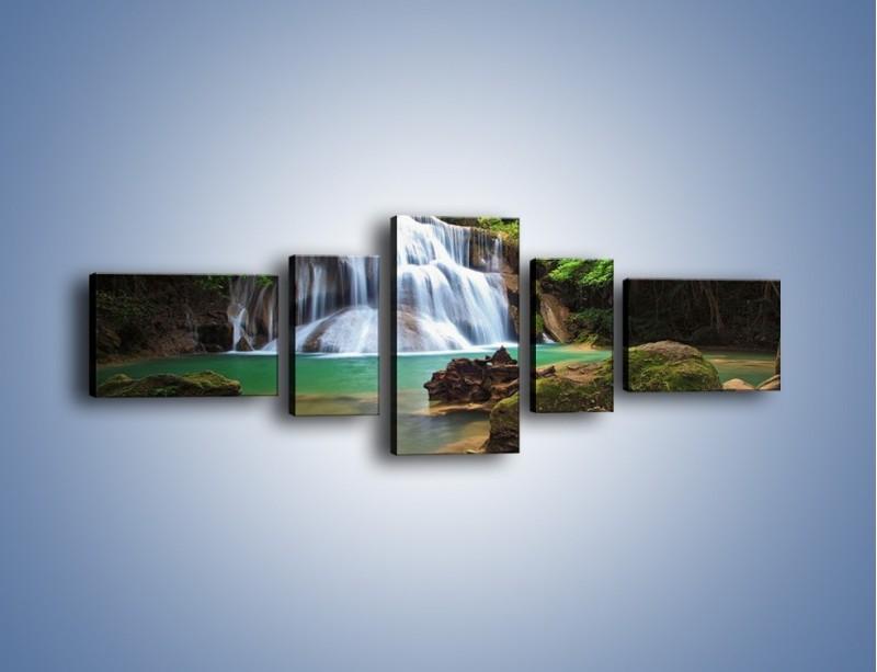 Obraz na płótnie – Drzewa schowane za wodospadem – pięcioczęściowy KN792W6