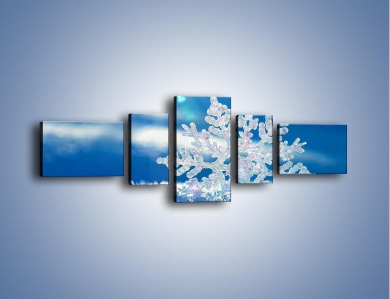 Obraz na płótnie – Diamentowa śnieżynka – pięcioczęściowy KN808W6