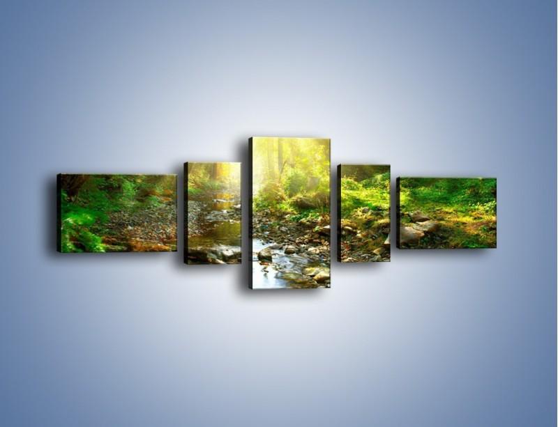 Obraz na płótnie – Kamiennym urwiskiem wśród potoku – pięcioczęściowy KN827W6