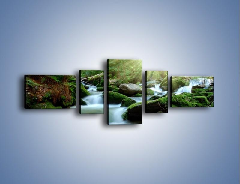Obraz na płótnie – Silny potok w środku lasu – pięcioczęściowy KN861W6