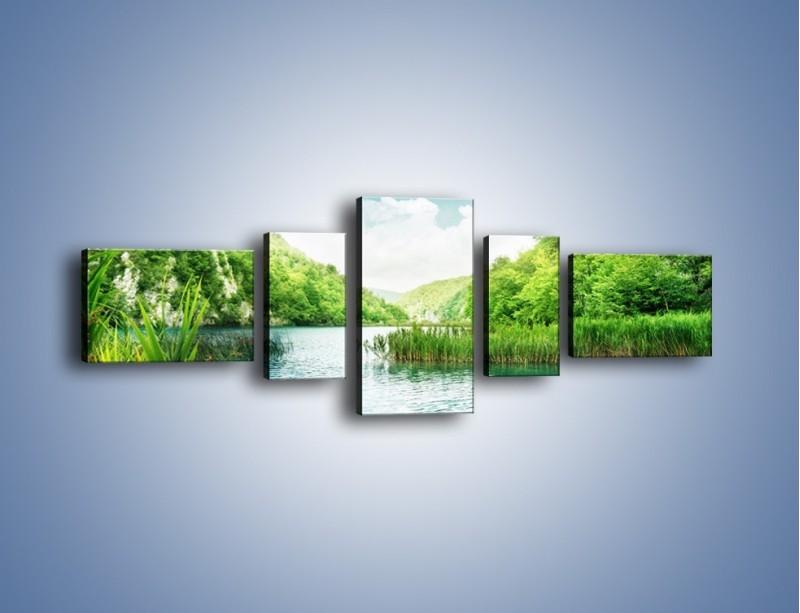 Obraz na płótnie – Wodnym śladem wśród zieleni – pięcioczęściowy KN884W6