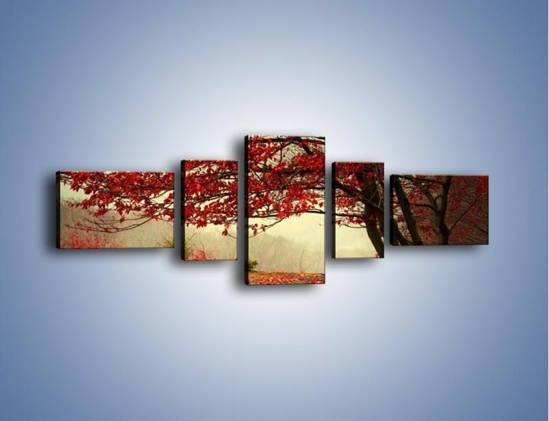 Obraz na płótnie – Spadające liście z drzew – pięcioczęściowy KN910W6