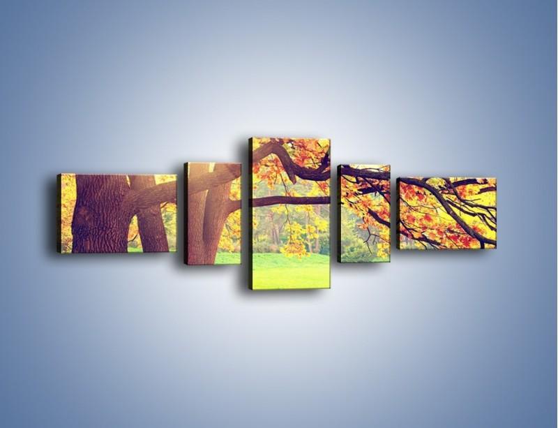 Obraz na płótnie – Jesienią w parku też jest pięknie – pięcioczęściowy KN967W6