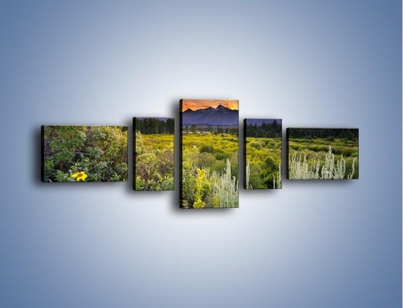 Obraz na płótnie – Wieczorny spokój na polanie – pięcioczęściowy KN987W6