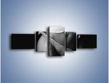 Obraz na płótnie – Króciutka bluzeczka i koronki – pięcioczęściowy L235W6