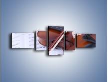 Obraz na płótnie – Melodia grana na skrzypcach – pięcioczęściowy O003W6