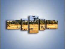 Obraz na płótnie – Antylopy w słonecznej afryce – pięcioczęściowy Z003W6