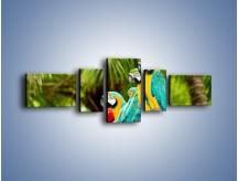 Obraz na płótnie – Kolorowe papugi w szeregu – pięcioczęściowy Z029W6