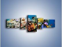 Obraz na płótnie – Fauna i kolorowi towarzysze – pięcioczęściowy Z116W6