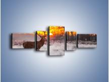 Obraz na płótnie – Jeleń o zachodzie słońca – pięcioczęściowy Z164W6