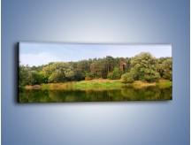 Obraz na płótnie – Las nad brzegiem wody – jednoczęściowy panoramiczny KN397