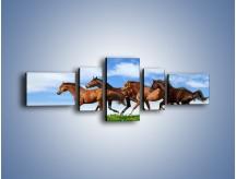 Obraz na płótnie – Galopujące stado brązowych koni – pięcioczęściowy Z172W6