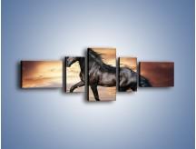 Obraz na płótnie – Mustang w galopie – pięcioczęściowy Z178W6