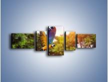 Obraz na płótnie – Kolorowa papuga w locie – pięcioczęściowy Z280W6