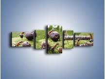 Obraz na płótnie – Ciężka praca mrówek – pięcioczęściowy Z308W6