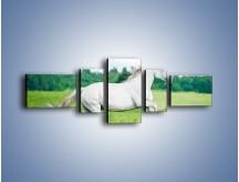 Obraz na płótnie – Biały koń i leśna polana – pięcioczęściowy Z317W6